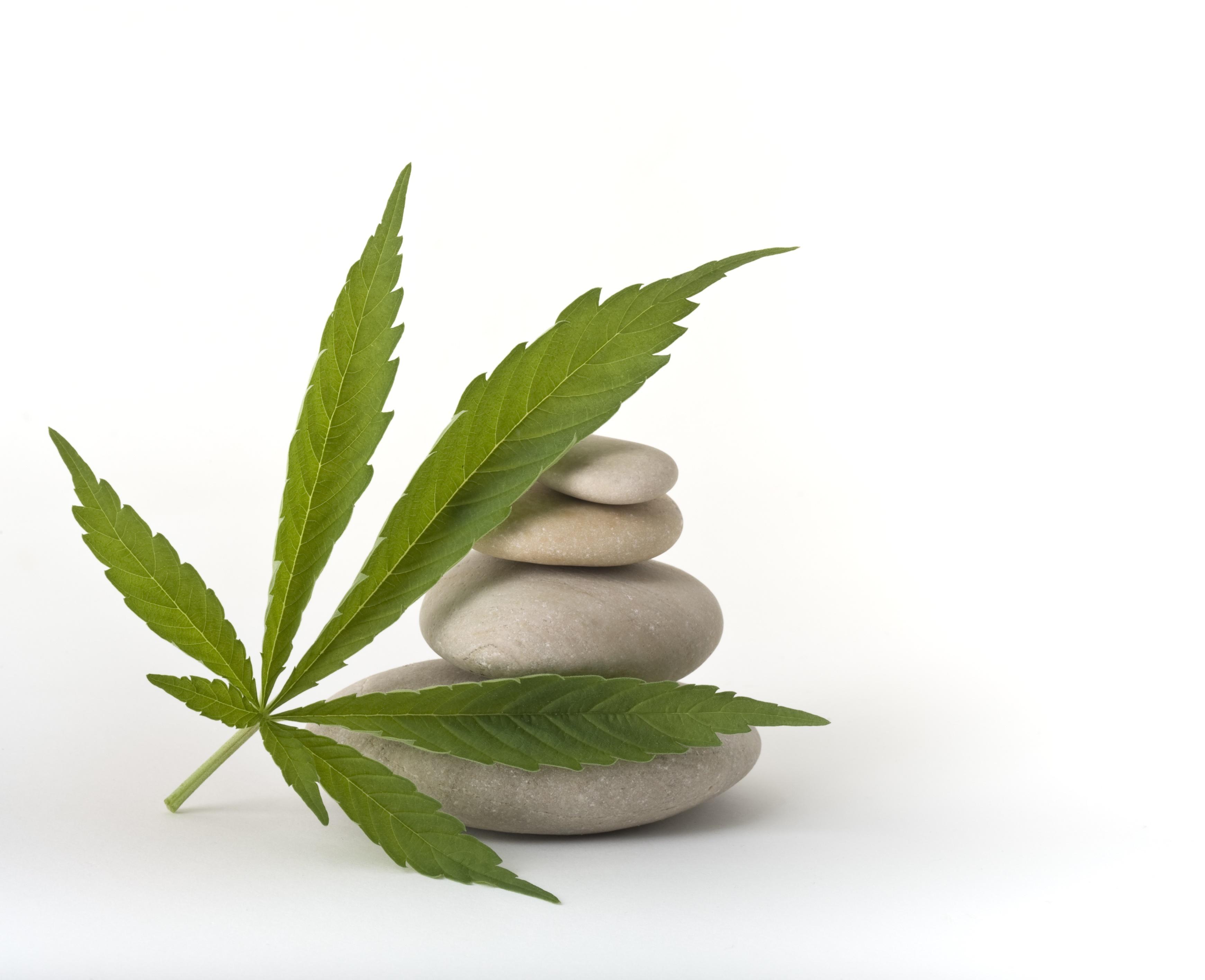 Cannabis + spa